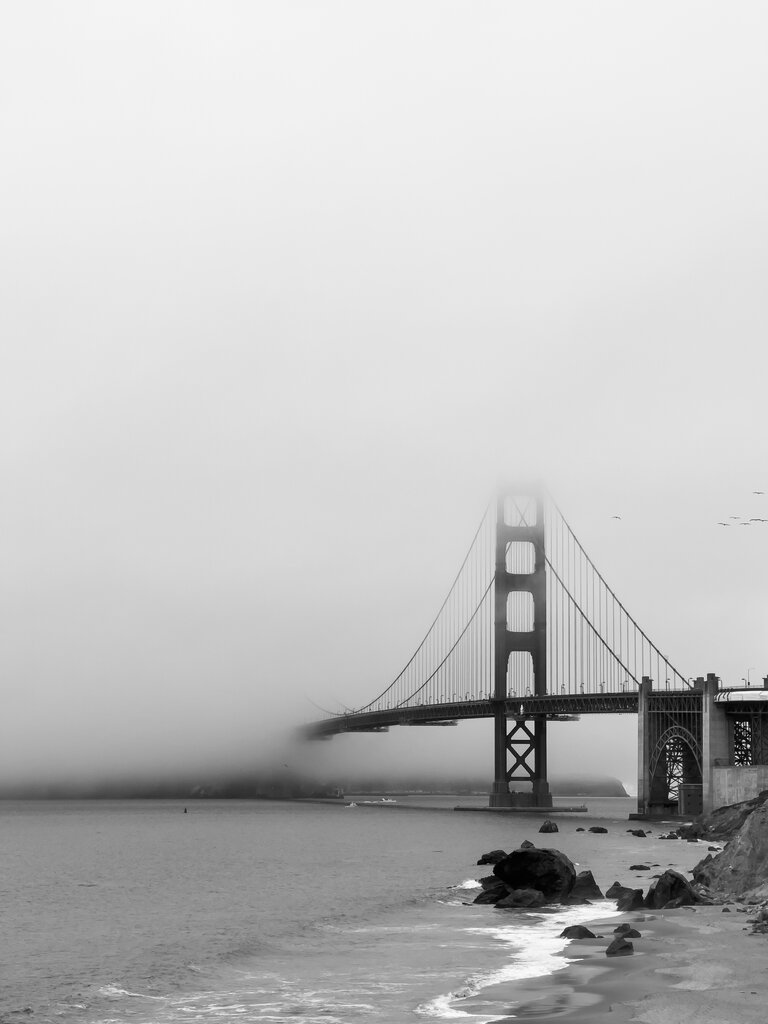 view of the golden gate bridge in the fog from the battery to bluffs trail.