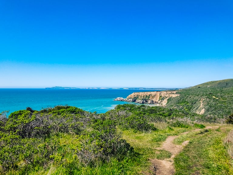 view of point reyes from bluff