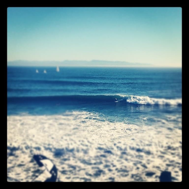 taylor knox surfing