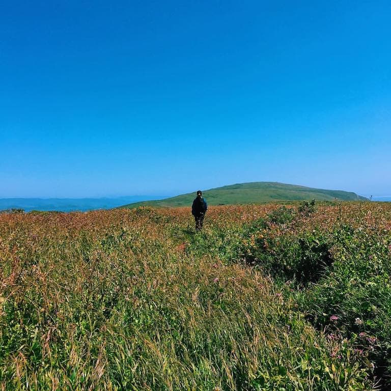 Tomales Point Hike Photo